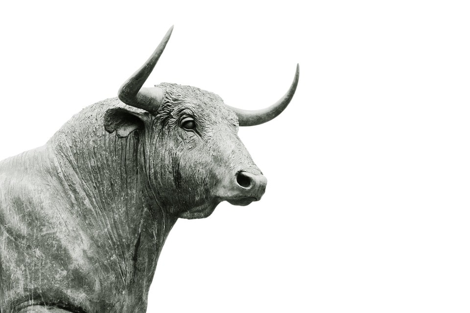 2512Don't Confuse Brains With A Bull Market
