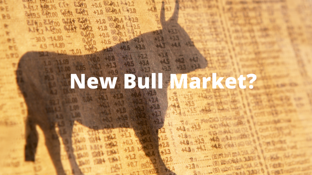 3917Don't Confuse Brains With A Bull Market